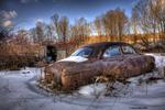 ford owego