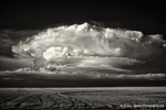 CO supercell